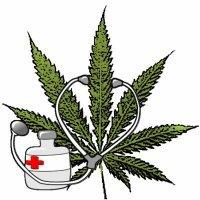 Cannabis terapeutica, sosteniamo iniziativa dei parlamentari radicali. Nel lazio nostra PDL giace da due anni nei cassetti della Pisana contro la salute dei malati