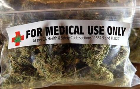 """Comunicato stampa Romanelli (SEL) su Legge Cannabis Terapeutica.""""Sabato a Firenze manifestazione per chiedere subito il regolamento attuativo e l'operatività delle nuove norme"""""""