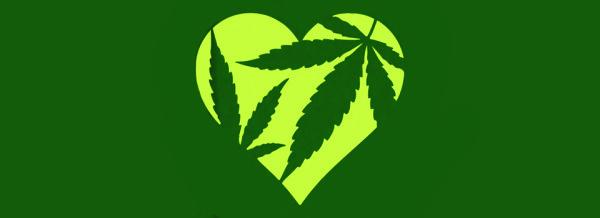 Apre il club della cannabis